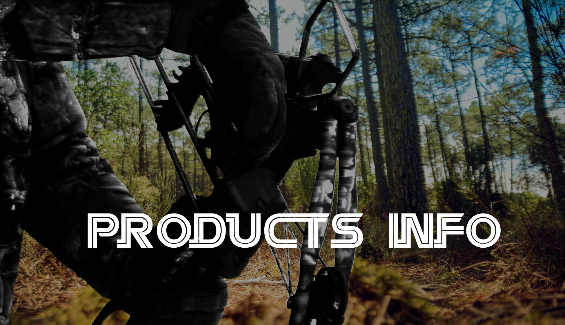 Products INTRODUCTION